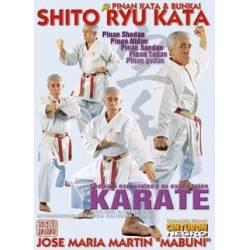 """PINAN KATA & BUNKAI – Shito Ryu Kata, José María Martín """"Mabuni"""""""
