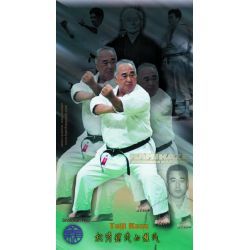 Colagem de pôsteres pelo mestre Taiji Kase, cor, 40x70 cm (Shotokan ryu kase ha)